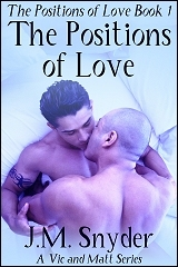 Cover for Book 1: The Positions of Love