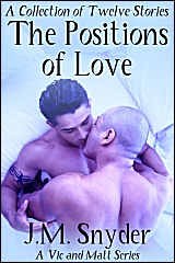 Cover for The Positions of Love Paperback