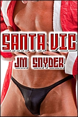 Cover for Santa Vic