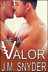 Cover for V: The V in Valor