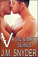 Cover for V: A Vic and Matt Series